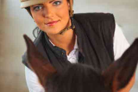 Brimington Equestrian Centre - Introduction to Horse Riding and Management - Save 69%