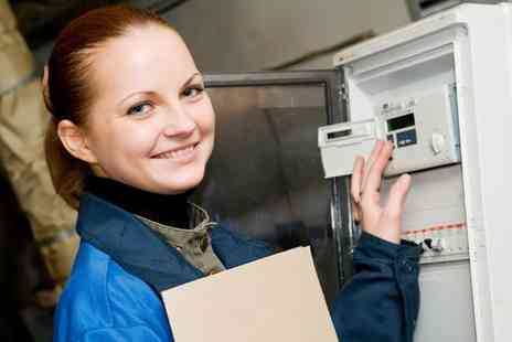 Energy Serv - Treat your home to a full domestic boiler service including a gas pressure check - Save 52%