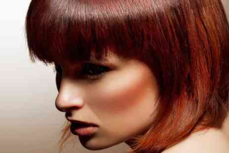 Exquisite Hair & Beauty Salon - Cut and Blow Dry With Conditioning - Save 63%
