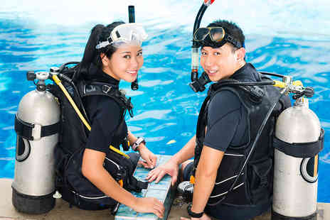 Echo Divers - Two Hour Try Dive Course for One or Two People - Save 60%