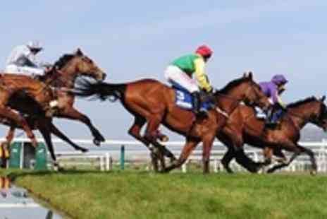Circuit Hospitality - Cheltenham National Hunt Festival, 11th March - Save 35%
