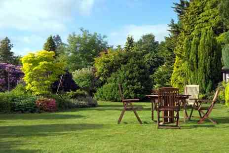 Greensleeves - Lawn Treatment  - Save 50%