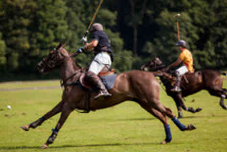Leadenham Polo Club - Lincolnshire Midweek Polo Break Including Tuition - Save 55%