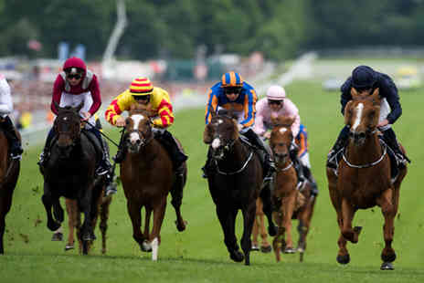 Town and Country Catering - Ladies Day hospitality ticket to the Investec Derby Festiva - Save 25%
