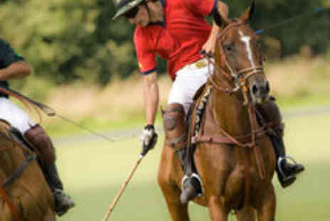 Vale of York Polo Club - Two-Hour Polo Lesson for One - Save 64%