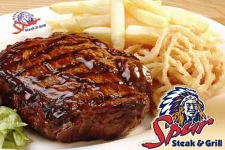 Spur Steak and Grill - £8 for £20 Worth of Food at Spur Steak & Grill - Save 60%