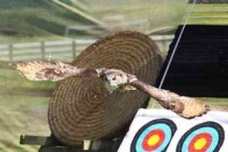 Perriswood Archery & Falconry Centre - Half day falconry experience Plus archery lesson for 1 - Save 56%