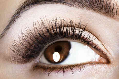 Pure Beauty Fulham - Half  Set of Eyelash Extensions - Save 51%