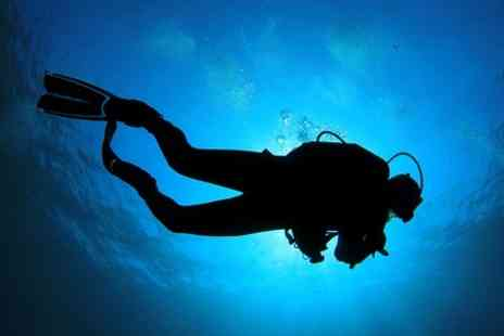 Nuttys Dive Centre - PADI Try Dive Session  - Save 50%