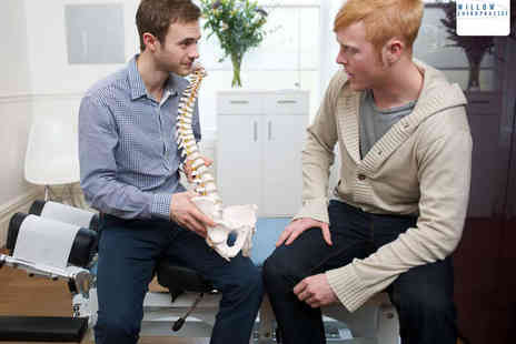 Willow Chiropractic - Chiropractic Assessment with Two Treatments - Save 76%
