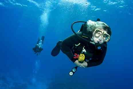 Academy Divers - PADI Open Water Diver Referral Course - Save 64%