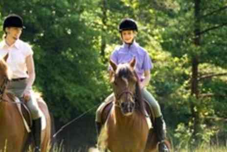 Moorhill Stables and Saddlery - Two Hours Of Horse Riding Lessons - Save 60%