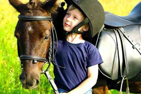Talygarn Equestrian Centre - Pony Day Experience  - Save 51%