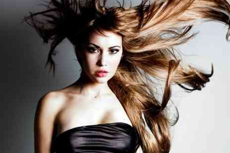 hairnation - Cut, Wash and Blow Dry  - Save 40%