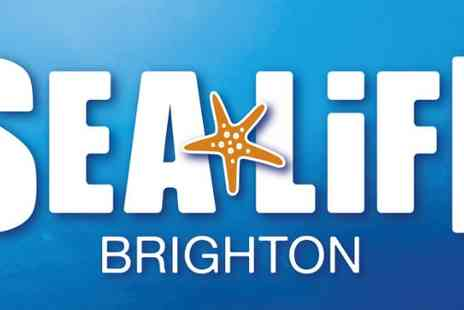 Sea Life Centre - Tickets to the Sea Life centre - Save 50%