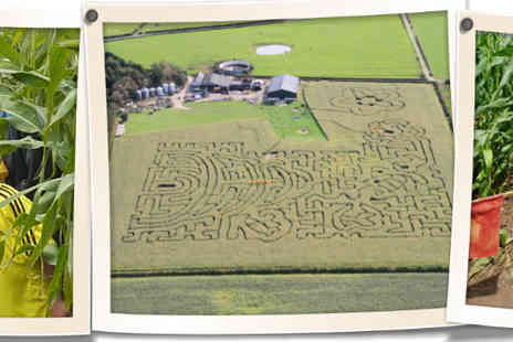 Singleton Maize Maze - Family ticket to Singletons Maize Maze - Save 50%