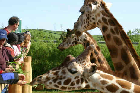 South Lakes Wild Animal Park - Family pass to the amazing South Lakes Wild Animal Park - Save 31%