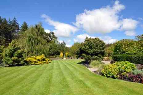 Greensleeves - Lawn Fertiliser and Weed Control Treatment - Save 58%