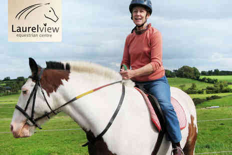 Laurelview Equestrian Centre - 45 Minute Horse Riding Lesson for One - Save 50%