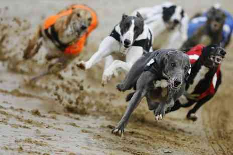 GRA Ltd - Greyhound Racing For Two with Two Drinks and Race Card - Save 74%