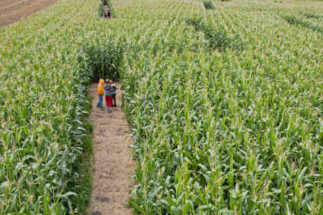 Singleton Maize Maze - Entry to Singleton Maize Maze for two - Save 57%