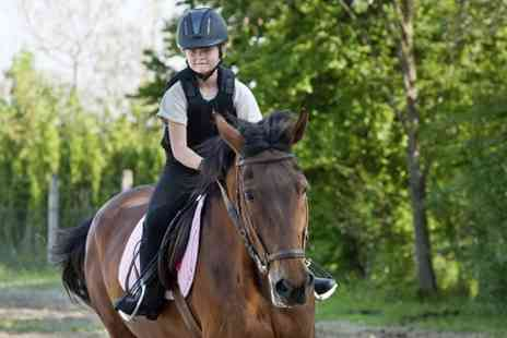 Middleton Riding Centre -  Lesson, Trek or Hack For One  - Save 60%