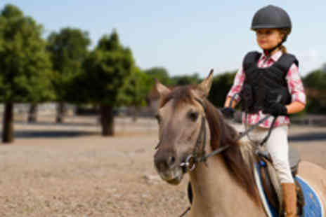 Downs-side Riding and Livery Centre - Two One Hour Horse Riding Lessons for One Person - Save 50%