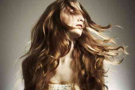 DK Hair - Cut Condition and Blow Dry  - Save 49%