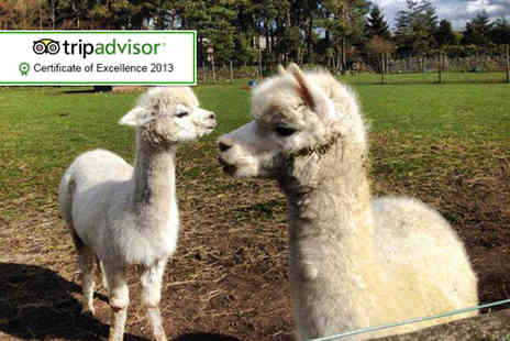 Matlock Farm Park - One adult and one child ticket - Save 63%
