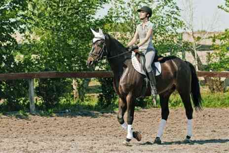 Fordbank Equi Centre - Horse Riding Lessons - Save 50%