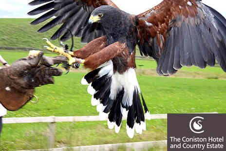 Falconry Experience - Half Day Falconry Experience With Breakfast and Lunch  - Save 27%