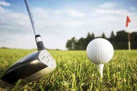 A S Brook Golf - Two Golf  PGA Lessons With Video Analysis  - Save 73%