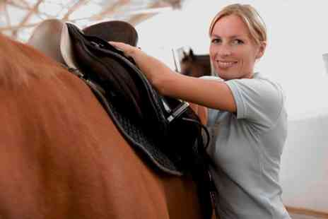 Woodside riding academy - Three 30 Minute Private riding Lessons - Save 58%