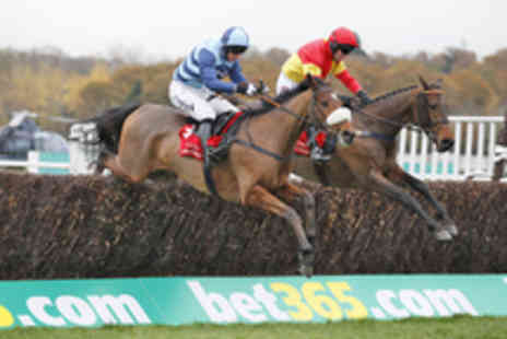 The Racecourse Newbury - Tickets to the bet365 Hennessy Festival  - Save 21%