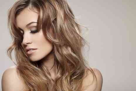 Bellisimo - Cut and Condition With Half Head Highlights or Full Head Colour  - Save 62%