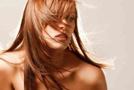 Amadeus Hair - Cut and Colour - Save 61%