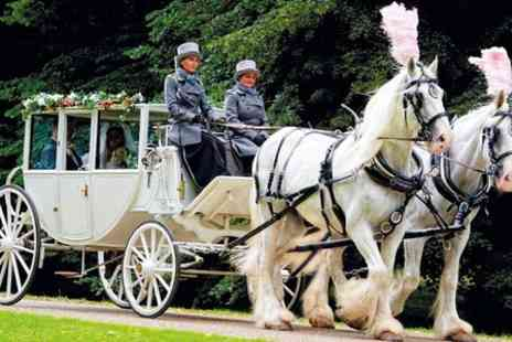 Kent Carriage Horses - Shire Horse and Carriage Experience For Two - Save 0%