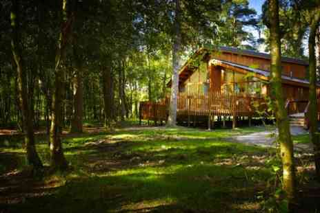 Forest Holidays - Four nights stay for up to four - Save 0%
