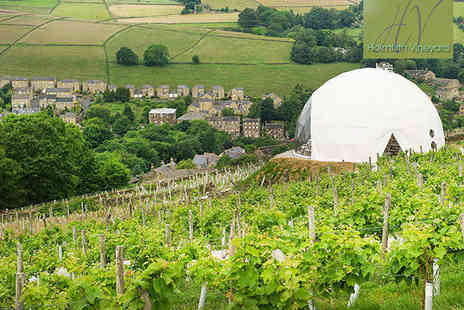 Holmfirth Vineyard - Vineyard Tour and Wine Tasting with Brunch, Afternoon Tea - Save 50%