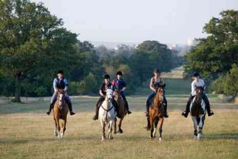 Wayside Stables - Horse Riding in Windsor Great Park  - Save 47%