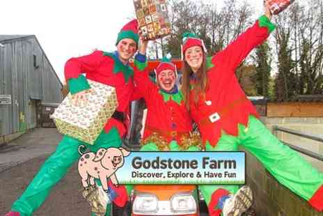 Godstone Farm - Entry to Meet Father Christmas at Godstone Farm For Adult - Save 23%