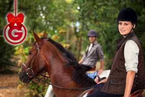 Fordbank Equi Centre - One Horse Riding Lesson  - Save 0%