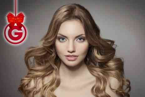 Shine Hair and Beauty - Wash and Blow Dry Plus Cut and Colour  - Save 34%
