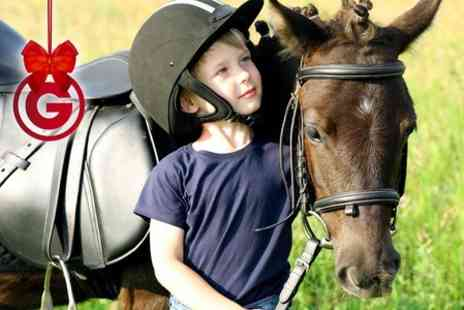 Middleton Riding Centre - Pony Party For Up to Five Children - Save 65%