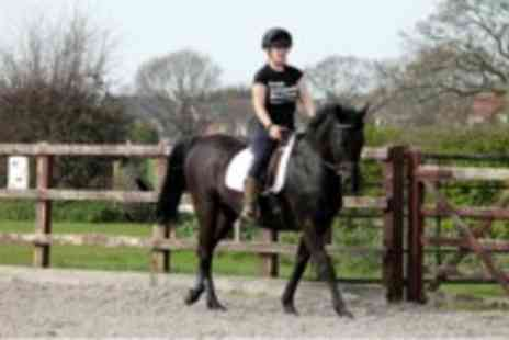 Croft Riding Centre - 30 Minute Introductory Lesson Plus Additional 60 Minute Lesson  - Save 25%