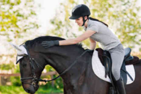 Manor Farm Riding Centre - Two Hour Adult Horse Riding Experience - Save 51%