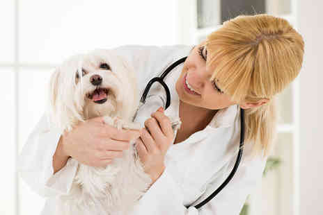 CoursesPal - Online Veterinary Nurse Course - Save 96%
