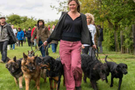 The UK Dog Whisperer - Dog Behaviour and Psychology Course for One - Save 74%