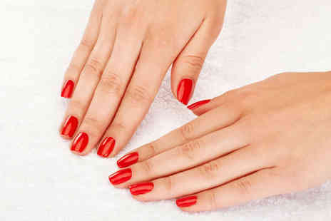 Paul Bryan Salon - Gel Polish for Fingers and Toes or Full Body Spray Tan - Save 55%