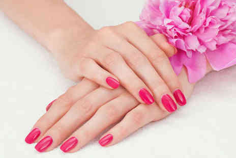 Nice Nails Baby - Shellac Manicure and Pedicure - Save 69%